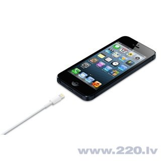 Kabelis Apple Lightning - USB (M) 0,5 m internetā