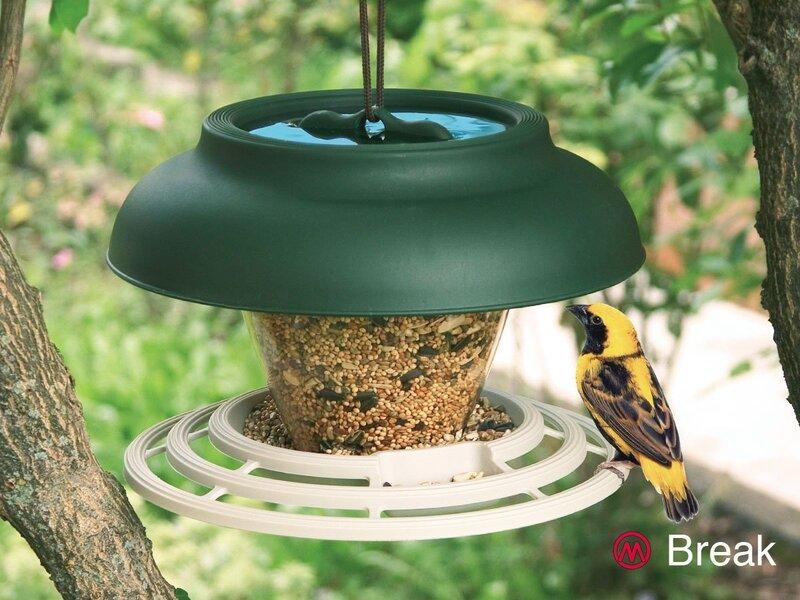 Putnu barotāva Marchioro Break
