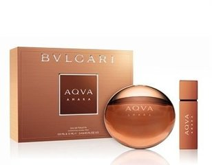 Komplekts Bvlgari Aqva Amara: edt 100 ml + mini