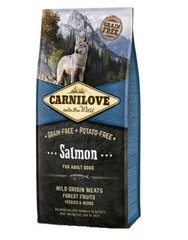 Carni Love Salmon for Adult 12kg