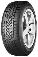 Seiberling Winter 205/55R16 91 H