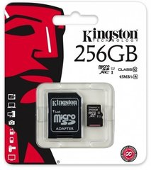 Kingston microSDHC (Gen II) 256 GB, 10 Class + SD adapteris