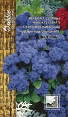 Meksikas agerāts Blue ball