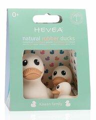 Hevea vannas rotaļlietas Pīlēnu ģimene Kawan cena un informācija | Hevea vannas rotaļlietas Pīlēnu ģimene Kawan | 220.lv