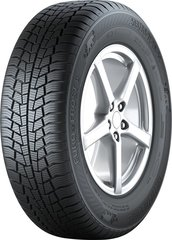 Gislaved EURO*FROST 6 205/55R16 91 T