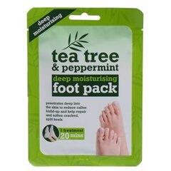 Глубоко увлажняющая маска- носки для ног Xpel Tea Tree & Peppermint
