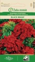 Čemurneļķes Black Magic cena un informācija | Puķu sēklas | 220.lv