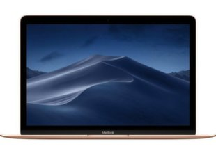 Apple MacBook 12 Retina (MRQP2ZE/A) EN