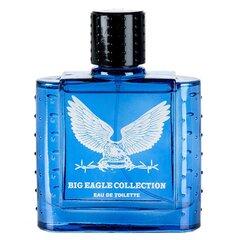 Tualetes ūdens Real Time Big Eagle Collection Blue EDT vīriešiem 100 ml