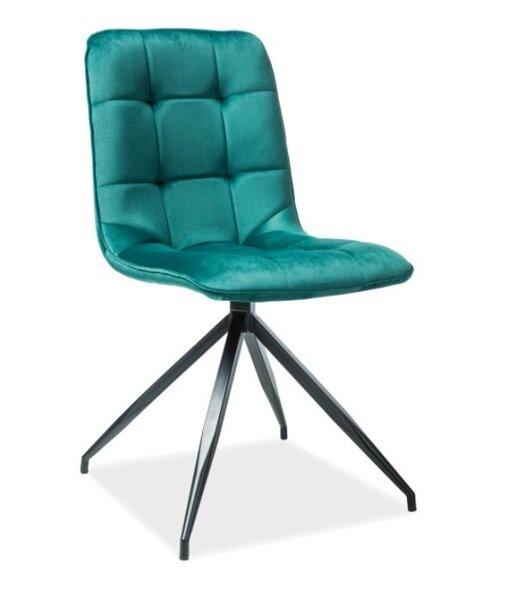 Комплект из 2-х стульев Signal Meble Texo, зеленый