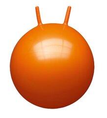 Lēciena bumba John, 60 cm, 59009 cena un informācija | Ūdens, smilšu un pludmales rotaļlietas | 220.lv