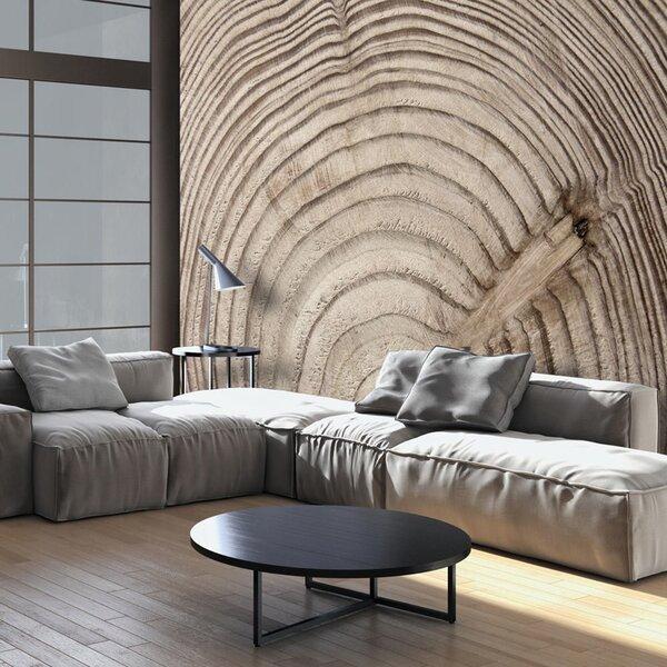 Foto tapete - Wood grain
