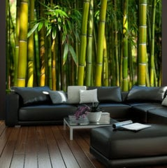 Foto tapete - Asian bamboo forest