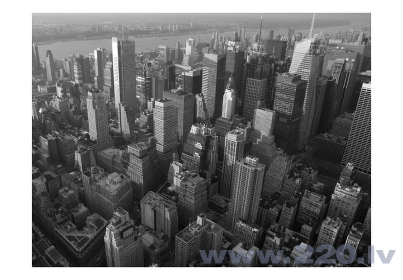 Foto tapete - New York: skyscrapers (bird's eye view) cena