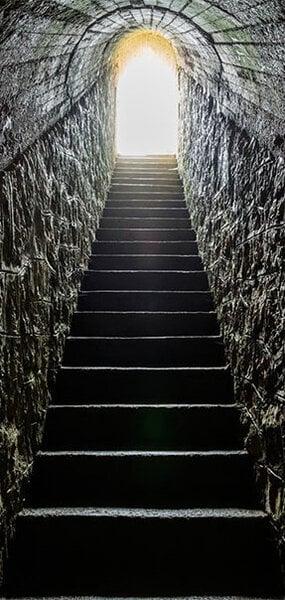 Foto tapete durvīm - Secret Passage atsauksme