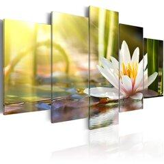Glezna - Sunny Lotus