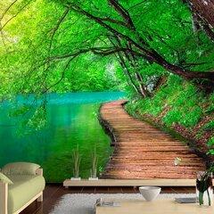 Fototapetes - Zaļais miers