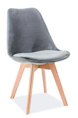 4-u krēslu komplekts Dior Velvet, pelēks