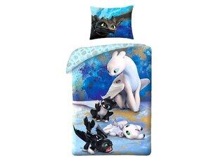 Bērnu gultas veļas komplekts Dragon, 2 daļas cena un informācija | Bērnu gultas veļa | 220.lv
