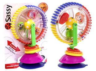 """Izglītojoša rotaļlieta """"Burvju rats"""""""