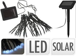 Dārza virtene ar saules bateriju, 50 LED cena un informācija | Āra apgaismojums | 220.lv
