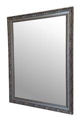 Spogulis Toledo 76x103 cm, pelēks cena un informācija | Spoguļi | 220.lv