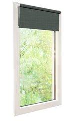 Ролет Mini, 100x150 см цена и информация | Рулонные шторы | 220.lv