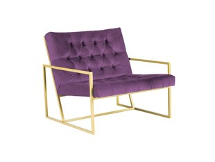 Кресло Mazzini Sofas Bono, фиолетовое цена и информация | Кресло Mazzini Sofas Bono, фиолетовое | 220.lv