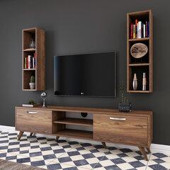 Sekcija Kalune Design M6, brūna cena un informācija | Sekcijas | 220.lv