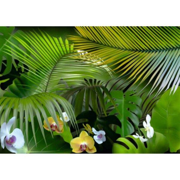 Fototapetes - Džungļu orhidejas cena