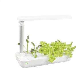 LED viedais dārzs cena un informācija | LED viedais dārzs | 220.lv